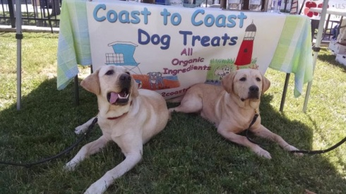 coast to coast doggies