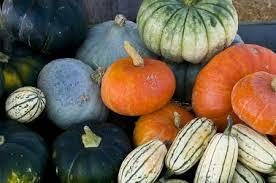 fall veg